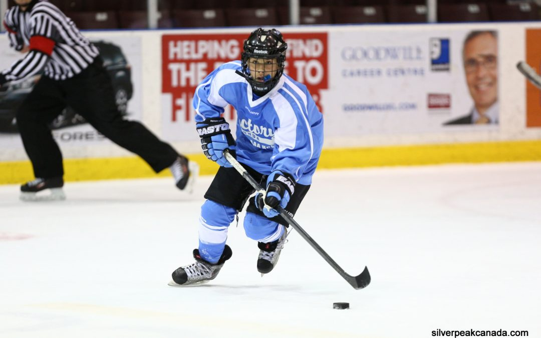 2016 Sharks Spring Hockey Tournament Samples