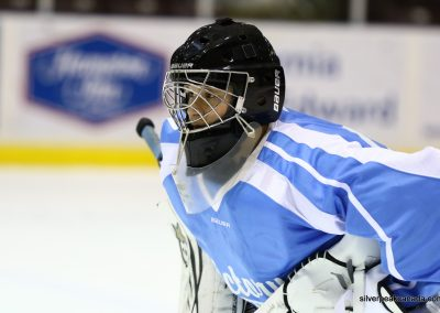 2016 Bluewater Sharks Tournament Boys Hockey Sarnia Ontario (3)