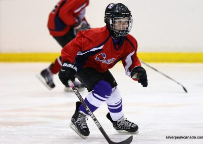 Bluewater Sharks Spring Hockey Tournament Sarnia Ontario (1)