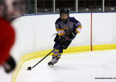 Bluewater Sharks Spring Hockey Tournament Sarnia Ontario (4)