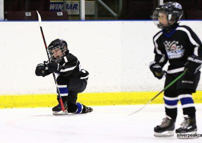 Bluewater Sharks Tournament samples hockey sarnia ontario photography