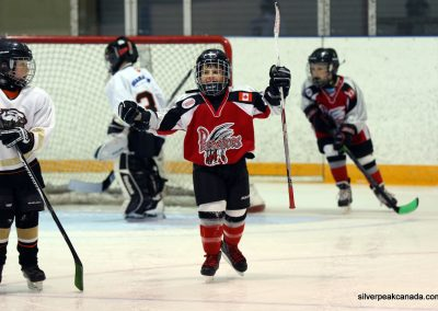 Lambton Shores Silver Stick Tournament SilverPeak Studios of Canada Hockey Photography 2017 (18)