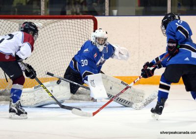 Lambton Shores Silver Stick Tournament SilverPeak Studios of Canada Hockey Photography 2017 (22)