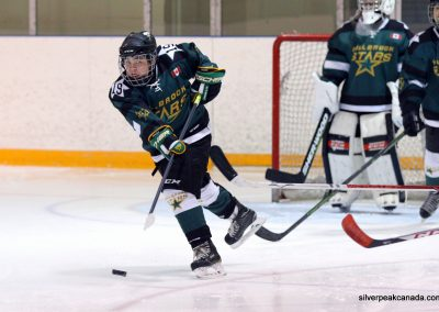 Lambton Shores Silver Stick Tournament SilverPeak Studios of Canada Hockey Photography 2017 (6)
