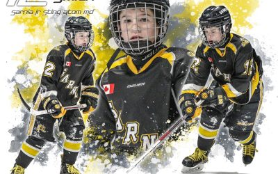 Congrats to the Sarnia Jr Sting Minor Atom MD – Alliance Champions