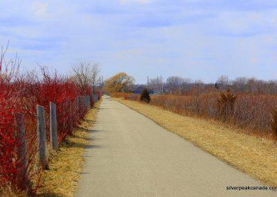 SilverPeak-Studios-Canada-Wildlife-Photography-Rick-Schroeter-Birds-Landscape-Photos-Sarnia-Ontario (2)