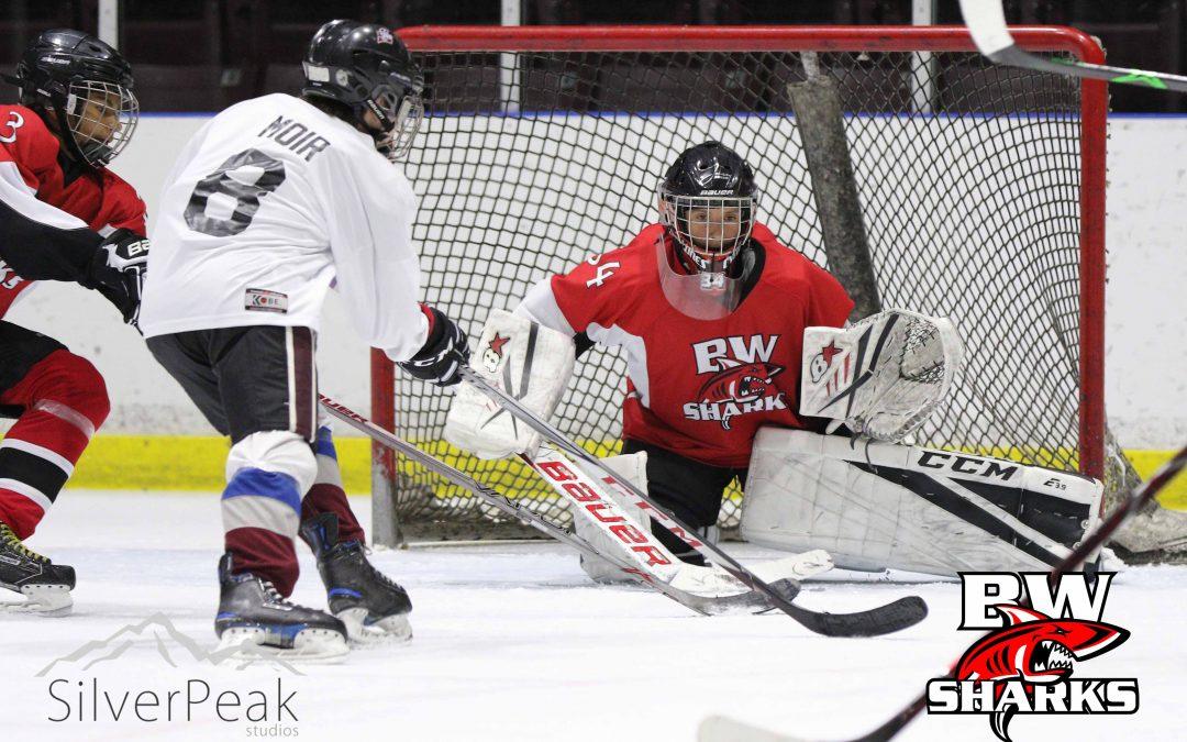 2018 Sharks Spring Hockey Tournament