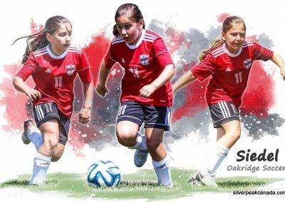 silverpeak-studios-canada-sarnia-soccer-photographysarnia-fc-custom-sportrait-poster (2)