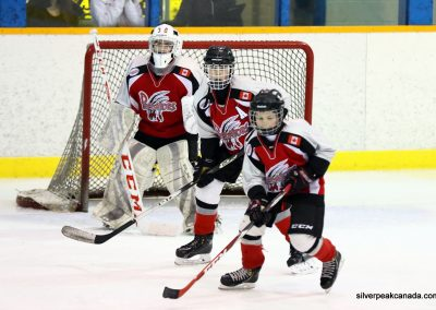 Sarnia_Hockey_2016_Tim_Horton_Christmas_Break_Tournament_Sabers_House_League (3)