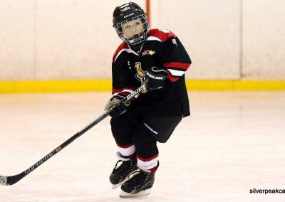 Sarnia_Hockey_2016_Tim_Horton_Christmas_Break_Tournament_Sabers_House_League (36)