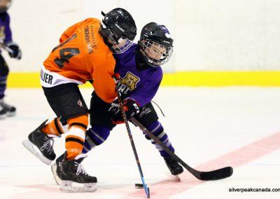 Sarnia_Hockey_2016_Tim_Horton_Christmas_Break_Tournament_Sabers_House_League (37)