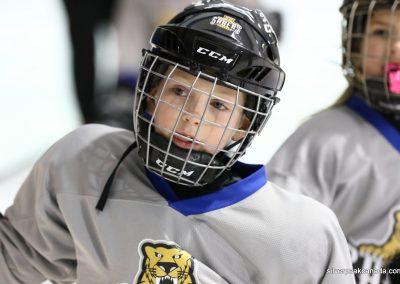 Sarnia_Hockey_2016_Tim_Horton_Christmas_Break_Tournament_Sabers_House_League (41)
