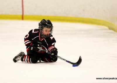 Lobster_Pot_2017_ (38)_Lower_Cape_Hockey