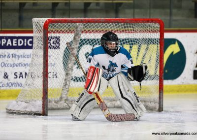 Lobster_Pot_2017_ (54)_Canal_Sharks_Hockey_Goalie