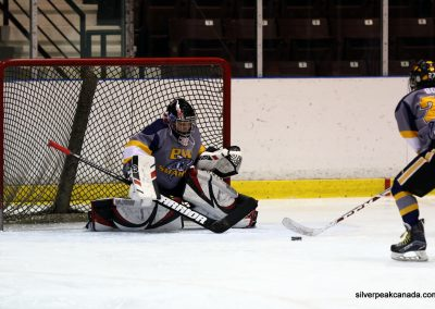 Bluewater Sharks Spring Hockey Tournament Sarnia Ontario (3)