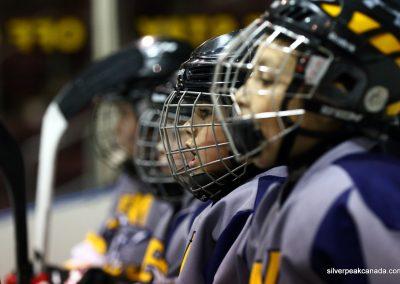 Bluewater Sharks Spring Hockey Tournament Sarnia Ontario (5)