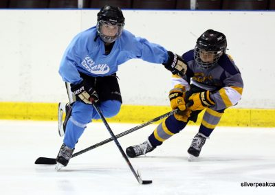 Bluewater Sharks Spring Hockey Tournament SilverPeak Studios Canada Action Sports Photography Sarnia Ontario Photo