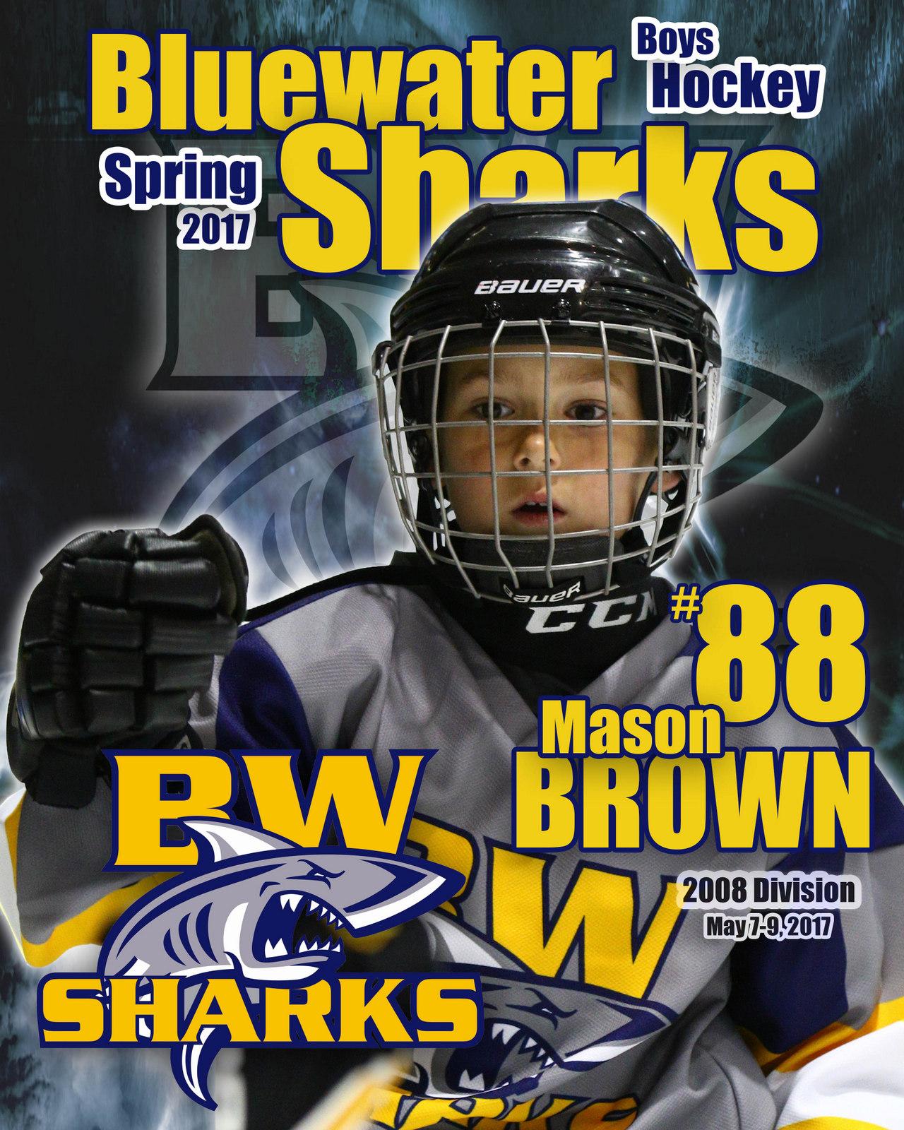 SilverPeak Studios Commemorative Poster Samples Action Sports Hockey Photography (12)