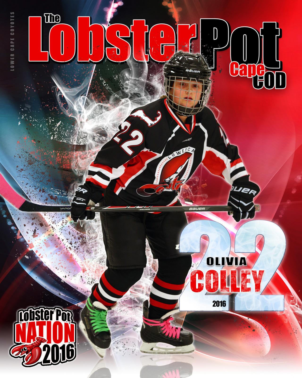 SilverPeak Studios Commemorative Poster Samples Action Sports Hockey Photography (9)