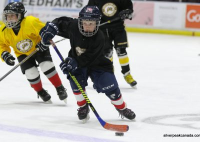 Novice AAA Showcase Sarnia Lambton Jr Sting SilverPeak Studios of Canada Hockey Photography Action Shots Posters (1)
