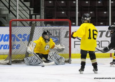 Novice AAA Showcase Sarnia Lambton Jr Sting SilverPeak Studios of Canada Hockey Photography Action Shots Posters (2)