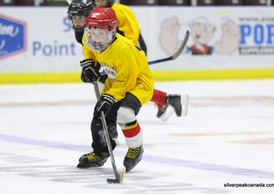 Novice AAA Showcase Sarnia Lambton Jr Sting SilverPeak Studios of Canada Hockey Photography Action Shots Posters (3)