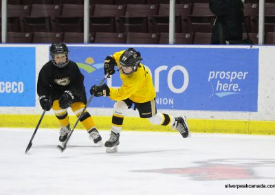 Novice AAA Showcase Sarnia Lambton Jr Sting SilverPeak Studios of Canada Hockey Photography Action Shots Posters (4)