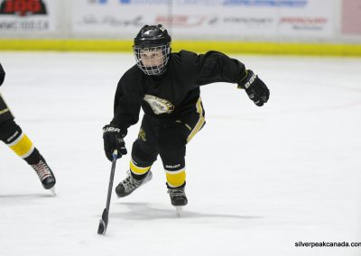 Novice AAA Showcase Sarnia Lambton Jr Sting SilverPeak Studios of Canada Hockey Photography Action Shots Posters (7)
