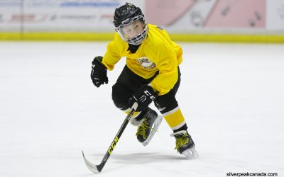 Lambton Jr Sting Novice AAA Showcase