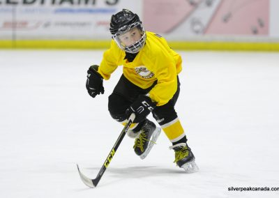 Novice AAA Showcase Sarnia Lambton Jr Sting SilverPeak Studios of Canada Hockey Photography Action Shots Posters (8)