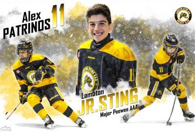 Sportrait-LPVer-LAMBTON-JR-STING-12x18-ALEX-PATRINOS-draft1